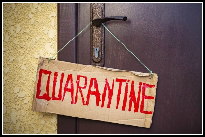 What to do at Home During Quarantine?
